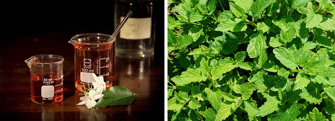 illustration exigences réglementaires industrie parfumerie